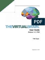 The Virtual Brain User Guide