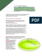 La Educaci{on Ambiental