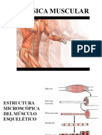 Biofisica Muscular