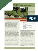 FR17300.pdf