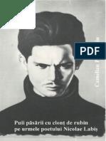 Camelian Propinatiu - Puii pasarii cu clont de rubin pe urmele poetului Nicolae Labis