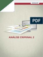 Senasp - Análise Criminal 2
