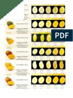 carta colorimetrica de mango (Autoguardado).docx