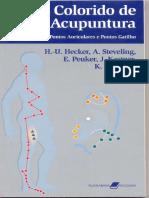 Atlas Colorido de Acupuntura - STEVELING HECKER.pdf
