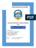 Monografia de La Pecepcion FINAL
