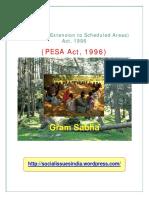 PESAAct1996