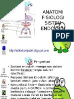 Anatomi Fisiologi Sistem Endokrin.br - Copy
