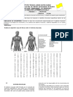 Formato Guia Clase Guia 8 2016 Musculo
