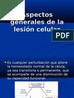 Lesion Celular