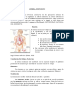 Sistema Endócrino Parte 1
