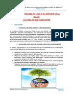 LA CALIDAD DEL AIRE EN LIMA Y SU IMPACTO EN LA SALUD.pdf