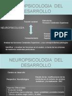 neurops.ppt
