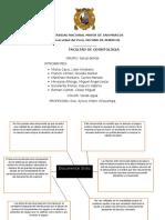 mapa conceptual-salud dental- estomatologia