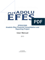 Anadolu EFES Financial Consolidation and Reporting Project User Manual
