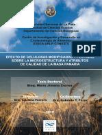CONCEPTOS PARA MI INFORMEDE PAN.pdf