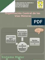 Organizacion Central de las vias motoras.pptx