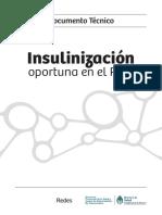 2015 02 Curso Insulinizacion Doc Tecnico