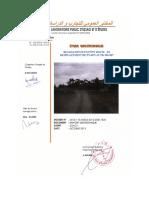 RAPPORT PN 6075 s.pdf