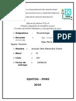 Informe 4 y 5 de Parasito (Unap)