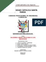 Algebra Lineal y Su Aplicacion CORREGIDO 111