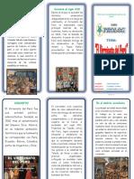 TRIP-Virreinato.pdf