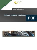 programa-formativo-experto-turbinas-de-gas.pdf