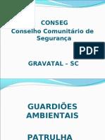 Conseg Gravatal