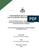 Tesis Lauro Leon.pdf