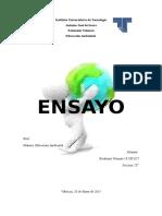 Ensayo Educ Ambiental