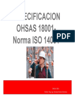Norma Ohsas 18001 Iso 14001 Plan Ssoma