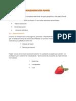Localizacion Macro Mermelada Dietetica de Frutilla