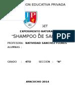 Informe de Experimento de Shampoo de Sabila