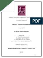PROYECTO DE INVESTIGACIÓN.docx