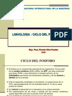 CICLO DEL FOSFORO 2015.pdf