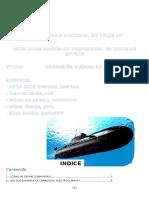 Corrosion Subamarina- Ing.Materiales