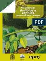 Guia Ilustrada Canon Del Rio Porce Antioquia Anfibios y Reptiles