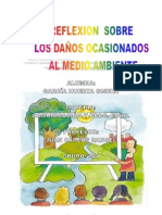 relexion ambiental
