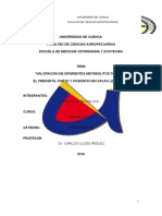 Informe Final Valoracion Metabolica