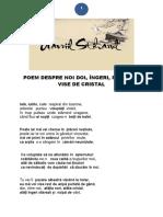 POEM DESPRE NOI DOI, ÎNGERI, PĂSĂRI ȘI VISE DE CRISTAL.pdf