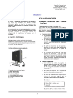 MONITORES_FINAL.docx