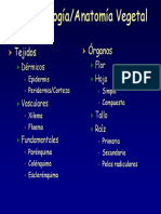Repaso_histologia_Vegetal(obligatoria).pdf