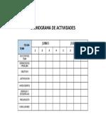 Cronograma de Asdfsdfctividades