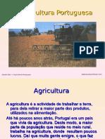A Agricultura Portuguesa.ppt