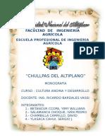 chullpaas.docx
