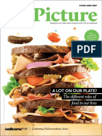 Big Picture Food and Diet.pdf
