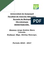 Universidad-AREA-DE-MICRO-SEGUNDO-PARCIAL.docx
