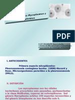 Clase 12. Generos Mycoplasma y Urea Plasma 2009.