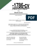 Daniel McGowan First Amendment 2nd Circuit Rehearing Petition
