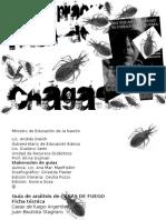 Mal de Chagas Preguntas