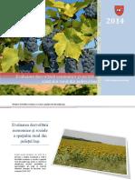 Studiul 2 Mediul Rural_feb2014